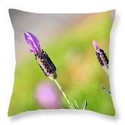 Lavender In The Sun Throw Pillow
