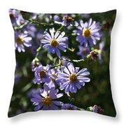 Lavender Ladies Throw Pillow