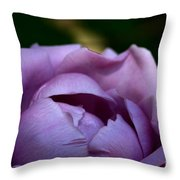 Lavender Morning Throw Pillow