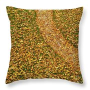 Lawn Covered With Fallen Leaves Throw Pillow