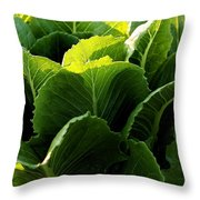 Layers Of Romaine Throw Pillow