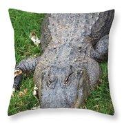 Lazy Gator II Throw Pillow