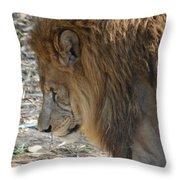 Le Lion Throw Pillow