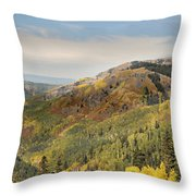 Lead King Basin Road 2 Throw Pillow