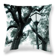 Lead The Way Throw Pillow
