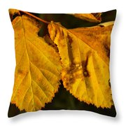 Leaf 3 Throw Pillow