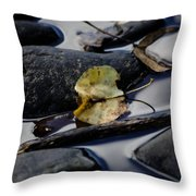 Leaf At River's Edge Throw Pillow