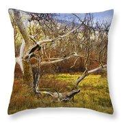 Leaf Barren White Tree Trunk In California No.1500 Throw Pillow