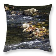 Leaf Collection Throw Pillow