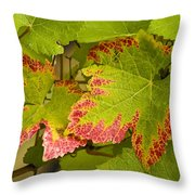 Leaf Design Throw Pillow