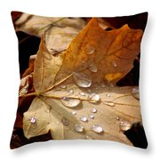 Leaf Doplets Throw Pillow by LeeAnn McLaneGoetz McLaneGoetzStudioLLCcom