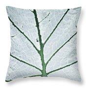 Leaf Hortus Botanicus, Close-up Throw Pillow
