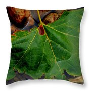 Leaf In The River Throw Pillow