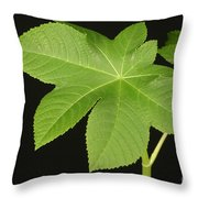 Leaf Of Castor Bean Plant Throw Pillow