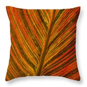 Leaf Pattern Abstract Throw Pillow