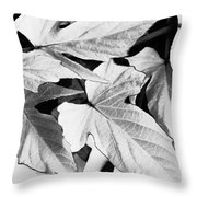 Leaf Study In Black And White Throw Pillow