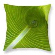 Leaf Tube Throw Pillow