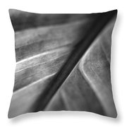 Leaf Venation   Throw Pillow