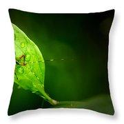 Leafhopper 3 Throw Pillow