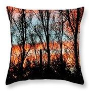 leafless Trees Throw Pillow