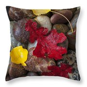 Leafs And Stones Throw Pillow