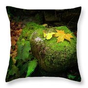 Leafs On Rock Throw Pillow