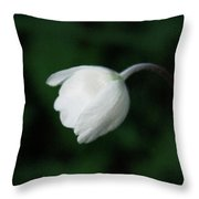 Leaning Anemone Throw Pillow