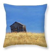 Leaning Barn Throw Pillow
