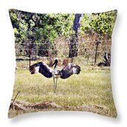Learner's License To Fly Throw Pillow