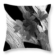 Leaves And Driftwood Bw Throw Pillow