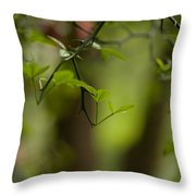 Leaves And Thorns Throw Pillow