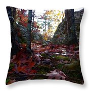 Leaves In The Forest Throw Pillow