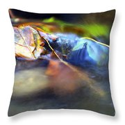 Leaves On Rock In Stream Throw Pillow by Sharon Talson