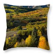 Leaves Turning At Dallas Divide Throw Pillow