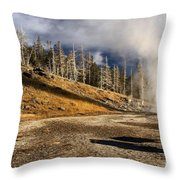 Leaving The Show Throw Pillow