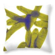 Legionella Pneumophila Throw Pillow