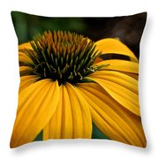 Leilani Throw Pillow