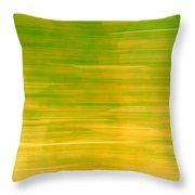 Lemon And Limes Throw Pillow