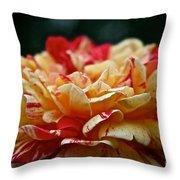Lemon Cherry Chip  Throw Pillow