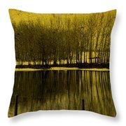 Lemon Lake Throw Pillow