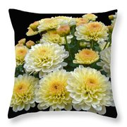 Lemon Meringue Chrysanthemums Throw Pillow