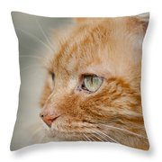 Leo The Kitty Beast Throw Pillow