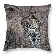Leopard Hunt Throw Pillow