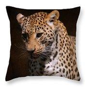 Leopard I Throw Pillow