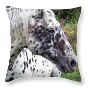 Leopard Of The Pacific Throw Pillow