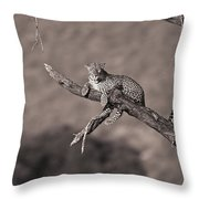 Leopard Panthera Pardus In A Tree Throw Pillow
