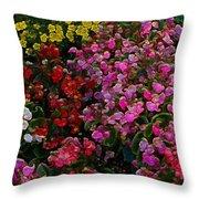 les fleurs II Throw Pillow