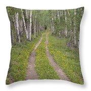 Less Traveled Road Through Aspens Throw Pillow