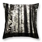 Let Nature Be Your Teacher Throw Pillow