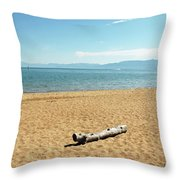 Let Sleeping Logs Lie Throw Pillow